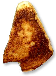 http://www.brodavelister.com/images/Virgin_Mary_Grilled_Cheese_Sandwich.jpg